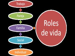 roles.vida